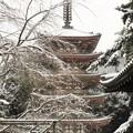 DSCN2656  醍醐寺・五重塔(テーマタグ:雪景色)