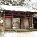 DSCN2668 醍醐寺・日月門(テーマタグ:雪景色)