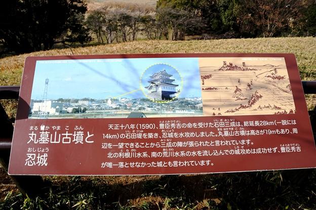 のぼうの城(忍城)
