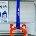 Photos: 相鉄そうにゃん吊革(テーマタグ:鉄道)