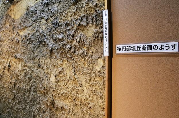 将軍山古墳の土層