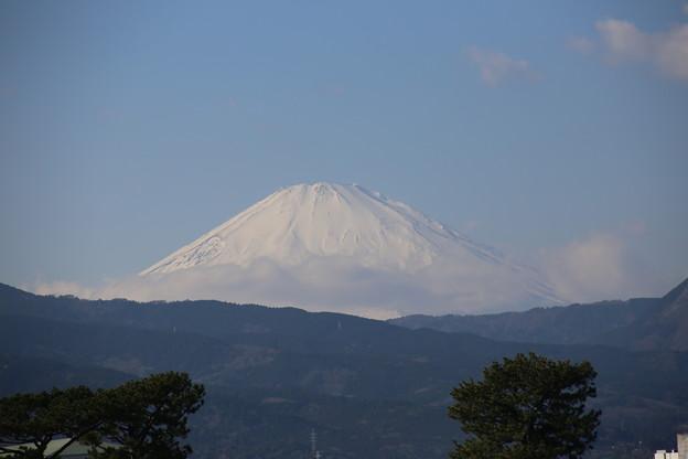 富士山ちょいアップ
