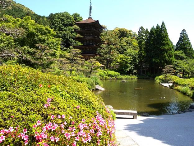 美しい公園・香山公園ー2