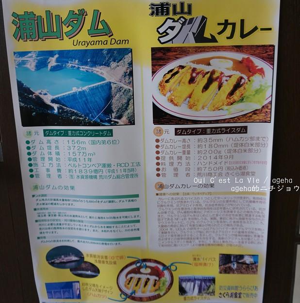 Photos: 浦山ダムカレー効用。