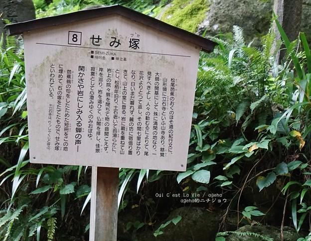芭蕉の旅。(12系 山形仙台旅)