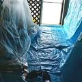 Photos: ベランダ塗装で室内に温室発現。