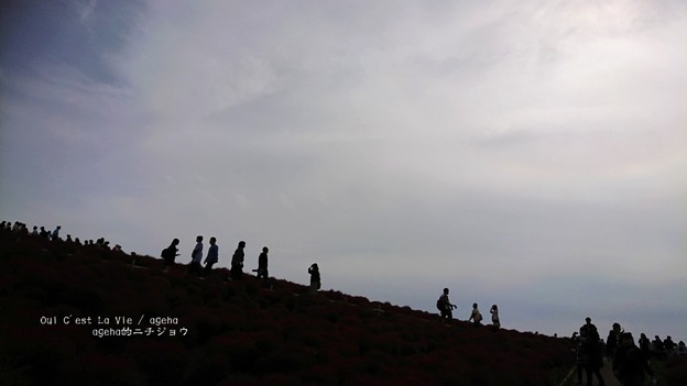 Photos: 富士登山?じゃなくて(ひたち海浜公園)