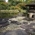 Photos: 穏やかな小春日和。(旧古河庭園)