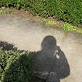 Photos: あ。(旧古河庭園)