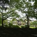 Photos: (旧古河庭園)一周して庭園へ戻る。
