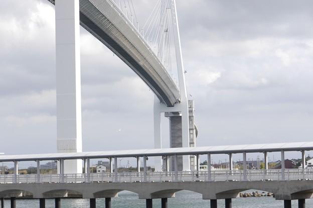 新湊大橋3,6KM