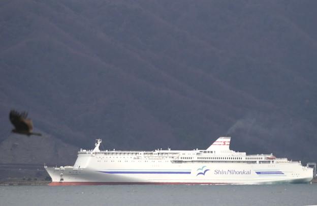 フェリー新日本海