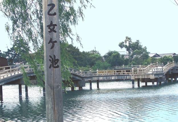 乙女が池 太鼓橋