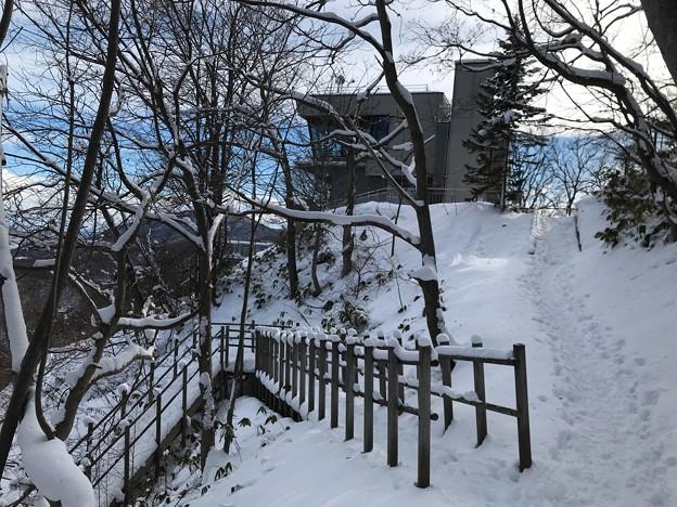 三角山IMG_5132