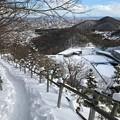 Photos: 三角山IMG_5134