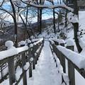 Photos: 三角山IMG_5133