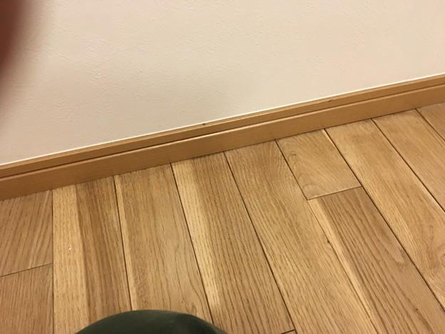 36_303号室研磨補修