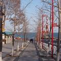Photos: 海?