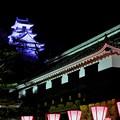高知城夜景