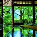 深緑の瑠璃光院