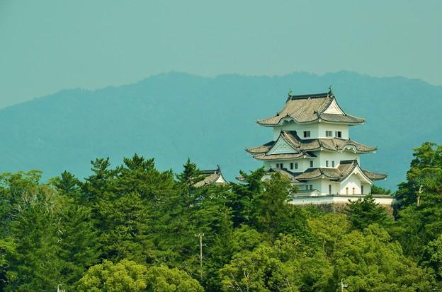 伊賀上野城 遠景