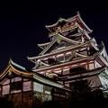 桃山城夜景