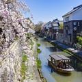 Photos: 八幡堀春風景