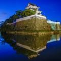 Photos: 岸和田城 水鏡