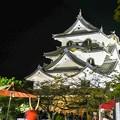 Photos: 彦根城夜景
