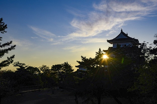伊賀上野城 落陽