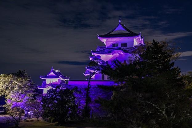 パープルリボンデーライトアップ伊賀上野城
