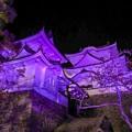 Photos: パープルリボンデーライトアップ伊賀上野城