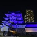 ブルーリボンデーライトアップ尼崎城1