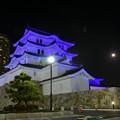 ブルーリボンデーライトアップ尼崎城2