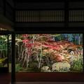 Photos: 南禅寺天授庵ライトアップ