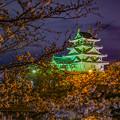 Photos: 墨俣一夜城夜景