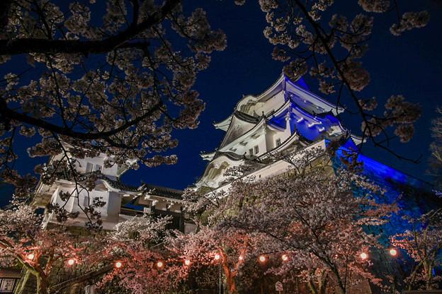 ブルーライトアップ伊賀上野城