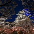 Photos: ブルーライトアップ伊賀上野城