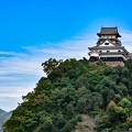 Photos: 犬山城
