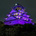 Photos: リレーフォーライフのパープルライトアップ 大阪城