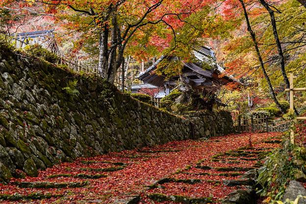 湖東三山 百済寺