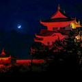 Photos: 伊賀上野城  レッドアラート