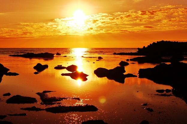 紅葉 日本海