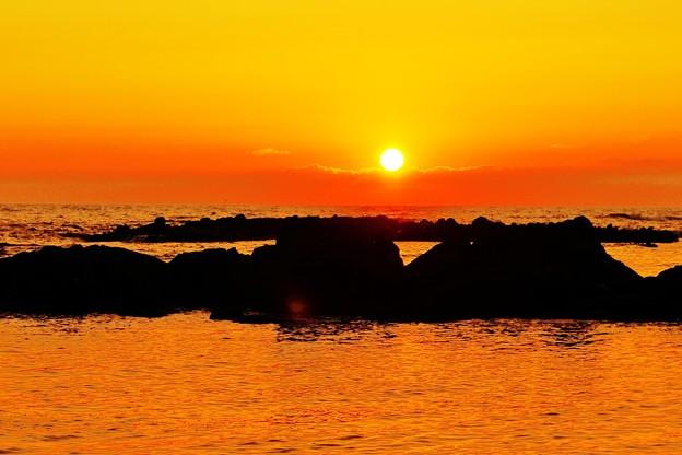 洛陽日本海