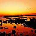 赤住 漁港