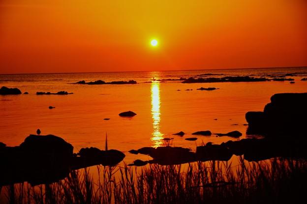 Photos: 落陽 日本海 赤住漁港