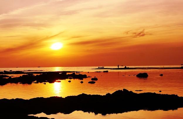 夕景 アオリイカ釣り