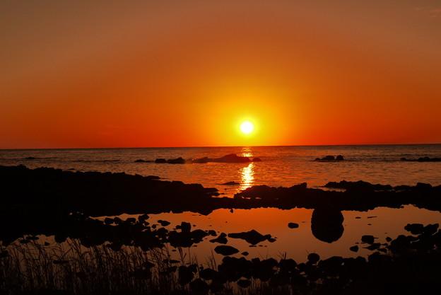 海の紅葉 能登は上野海岸