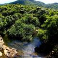 写真: 西表島はもう夏がすぐそこです^^