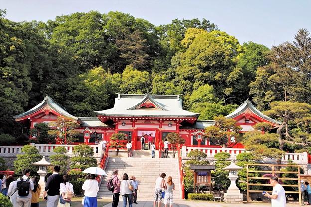 写真: 足利織姫神社